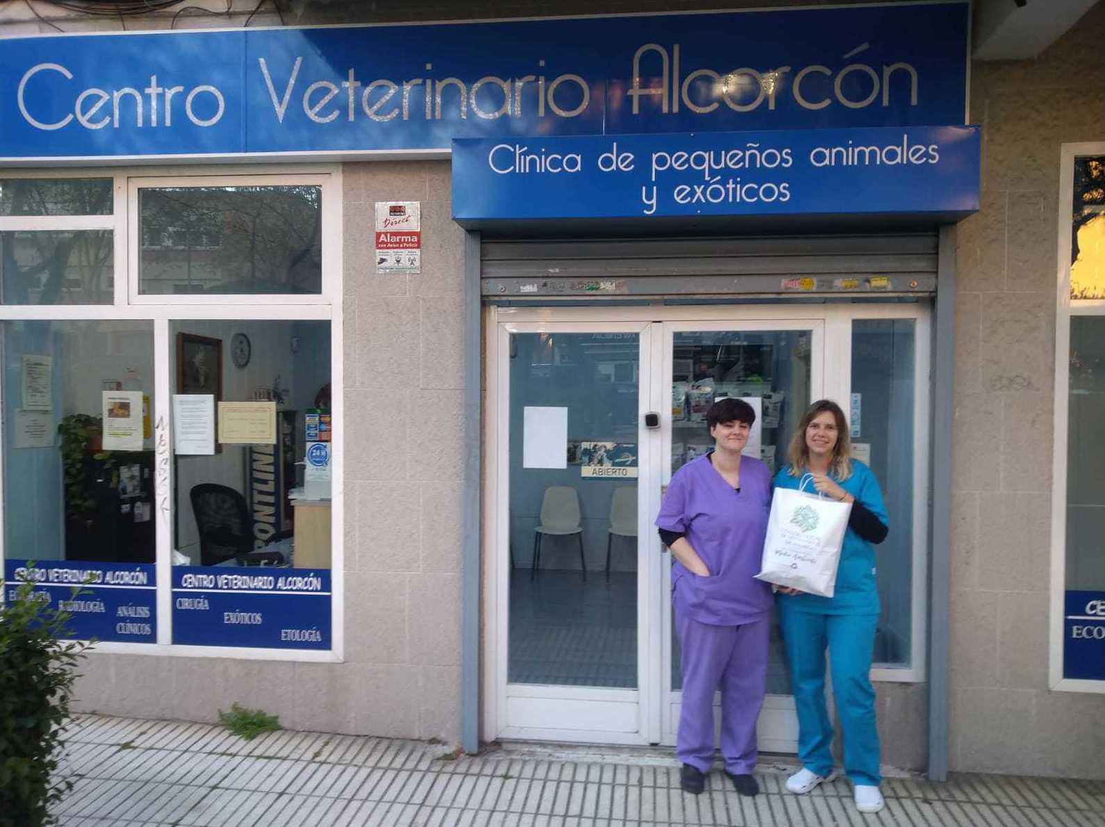 Foto 1 de Veterinarios en Alcorcón | Veterinario Alcorcón