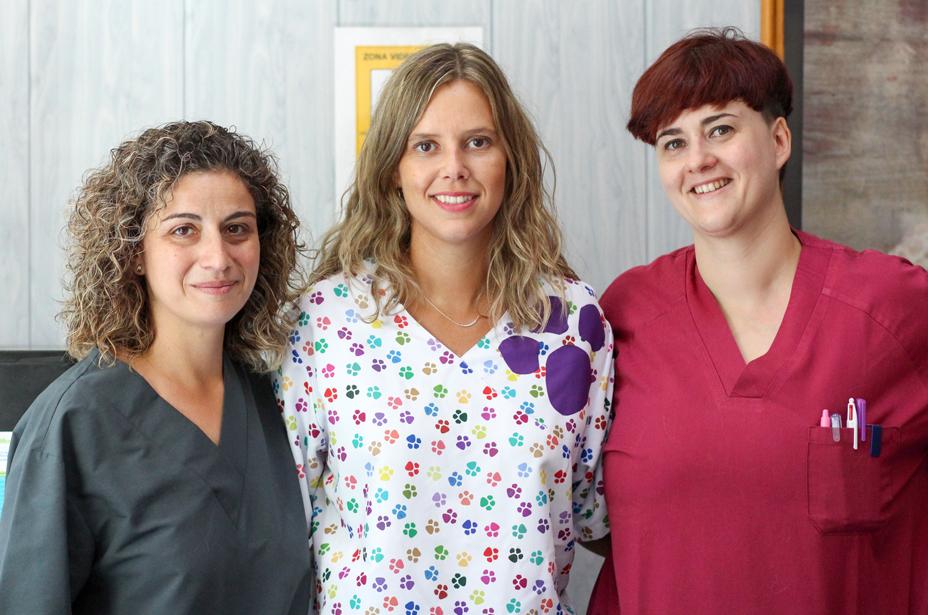 Centro veterinario con profesionales en Alcorcón