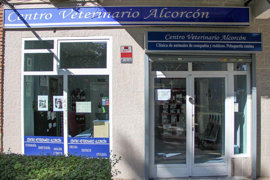 Centro veterinario en Alcorcón