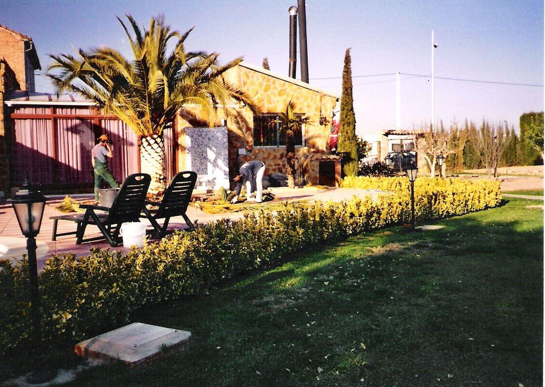 Foto 3 de dise o y mantenimiento de jardines en godella sebasti n mart nez cos n - Mantenimiento de jardines ...