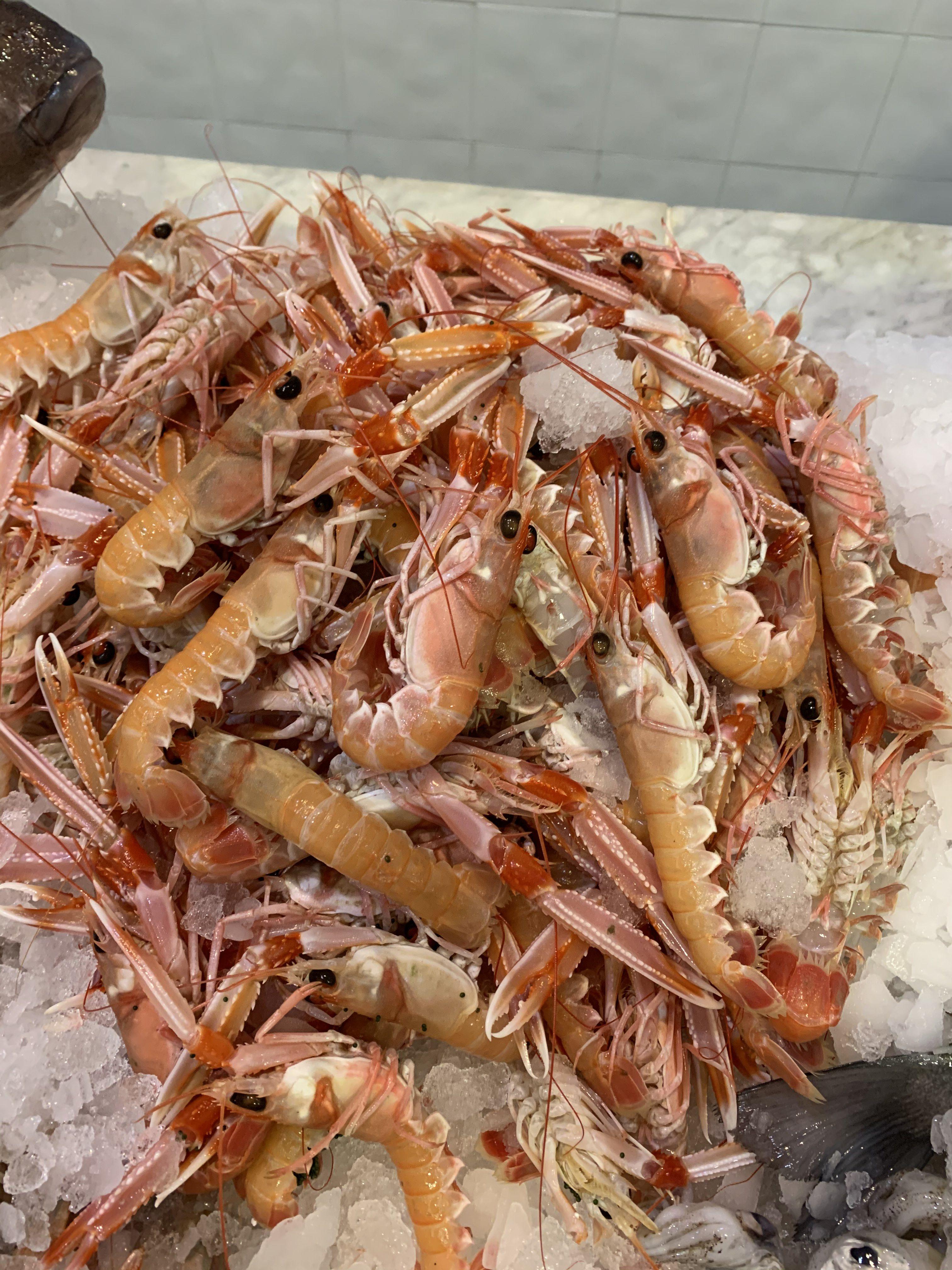 Todo tipo de pescados y mariscos Granada