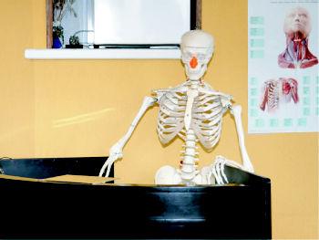 Foto 6 de Fisioterapia en Errenteria | Centro de Rehabilitación Beraun