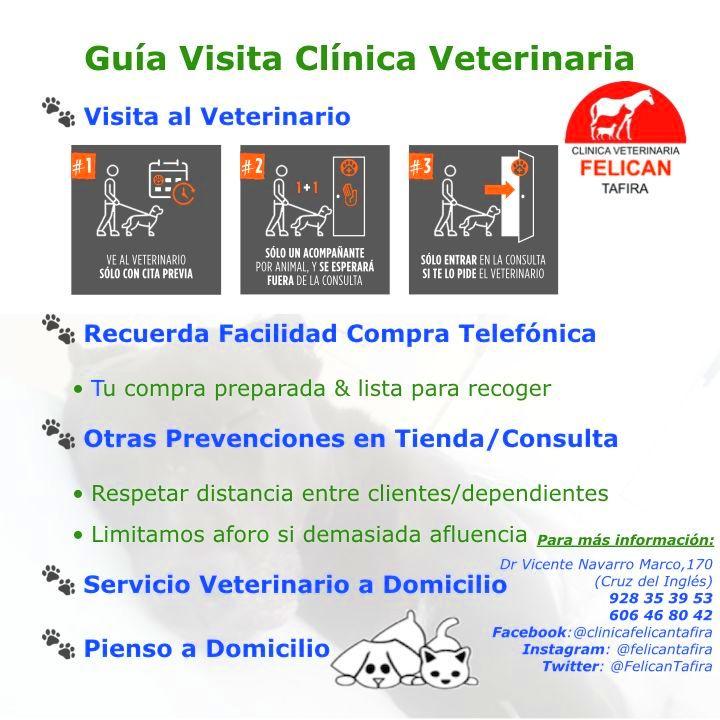Guía Visita Clínica Veterinaria
