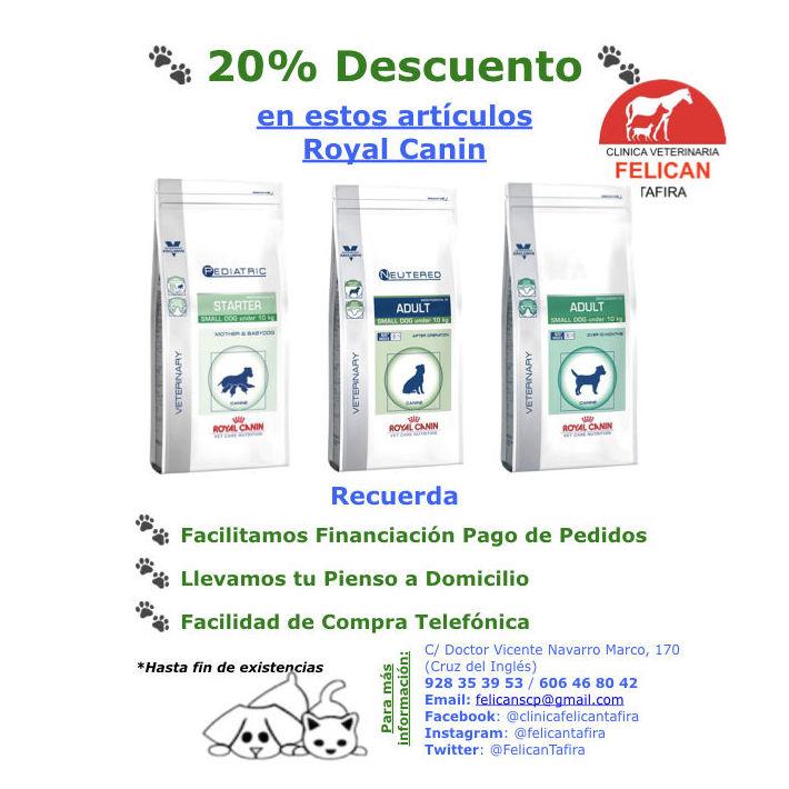 20% Descuento en artículos Royal Canin