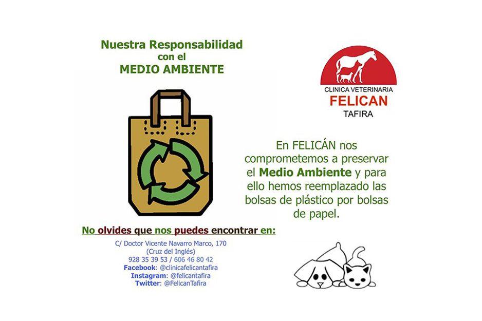 Foto 7 de Veterinarios en  | Clínica Veterinaria Felicán Tafira