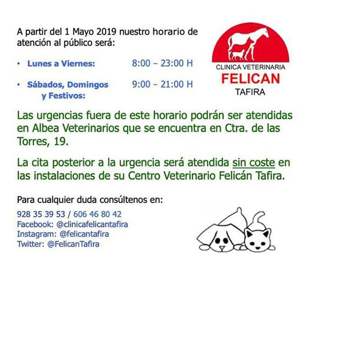 Foto 11 de Veterinarios en  | Clínica Veterinaria Felicán Tafira