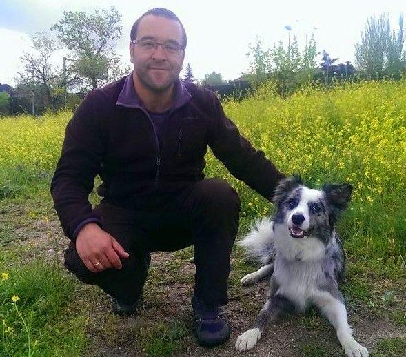 Adiestramiento de obediencia en residencia: Servicios de Adiestramiento canino NobleCan