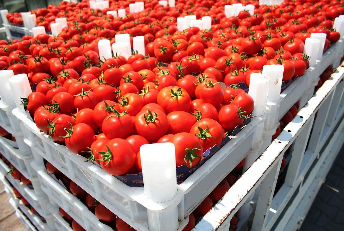 Mayoristas de hortalizas Mercamadrid