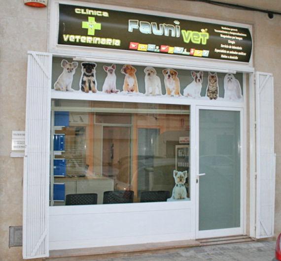 Foto 1 de Veterinarios en Vinaròs | Clínica Veterinaria Faunivet