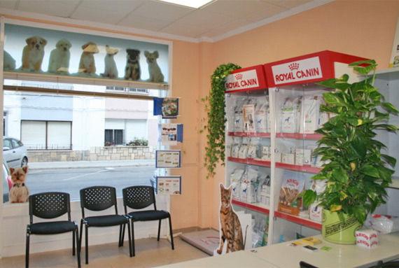 Foto 2 de Veterinarios en Vinaròs | Clínica Veterinaria Faunivet