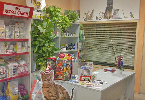 Foto 3 de Veterinarios en Vinaròs | Clínica Veterinaria Faunivet