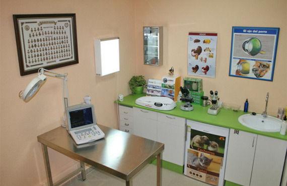 Foto 8 de Veterinarios en Vinaròs | Clínica Veterinaria Faunivet