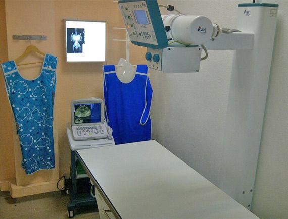 Foto 6 de Veterinarios en Vinaròs | Clínica Veterinaria Faunivet