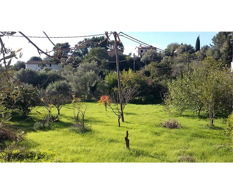 Venta de terrenos en Palma de Mallorca