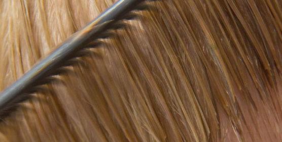 Diagnóstico  digital de su pelo