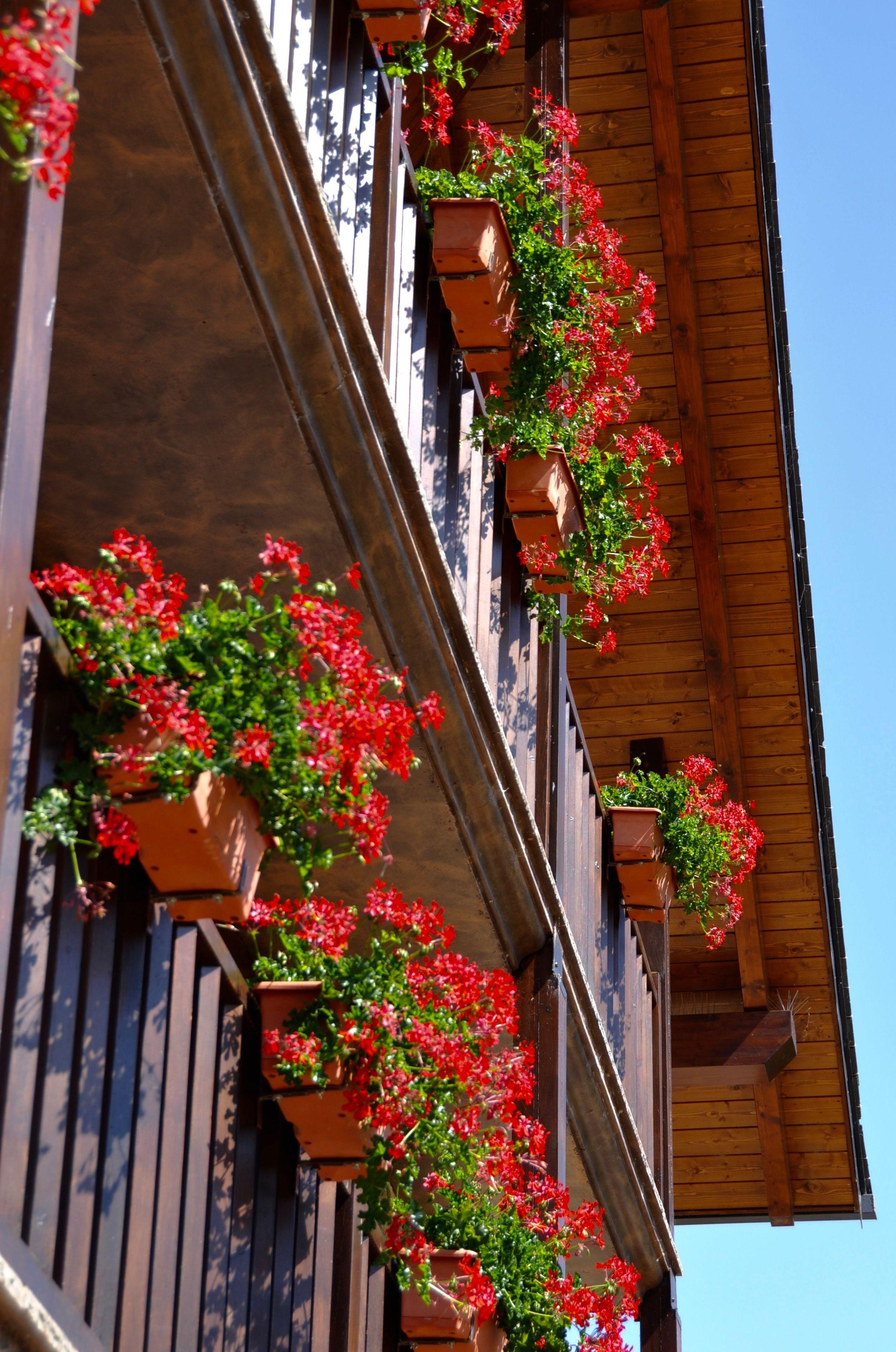 Balcones apartamentos.