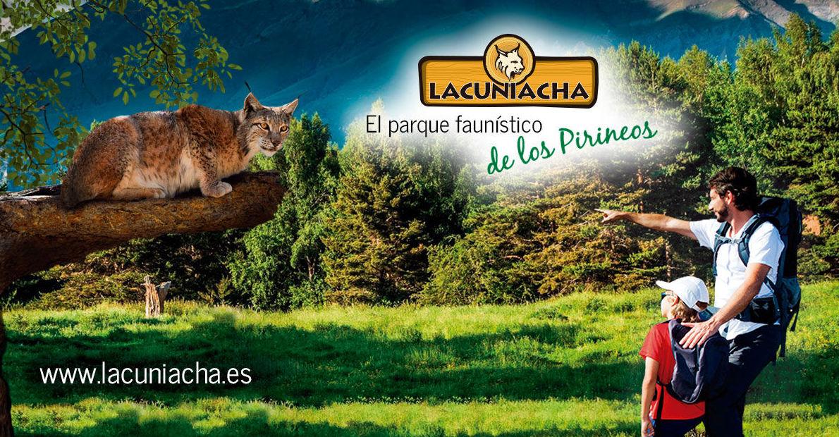 Lacunicha