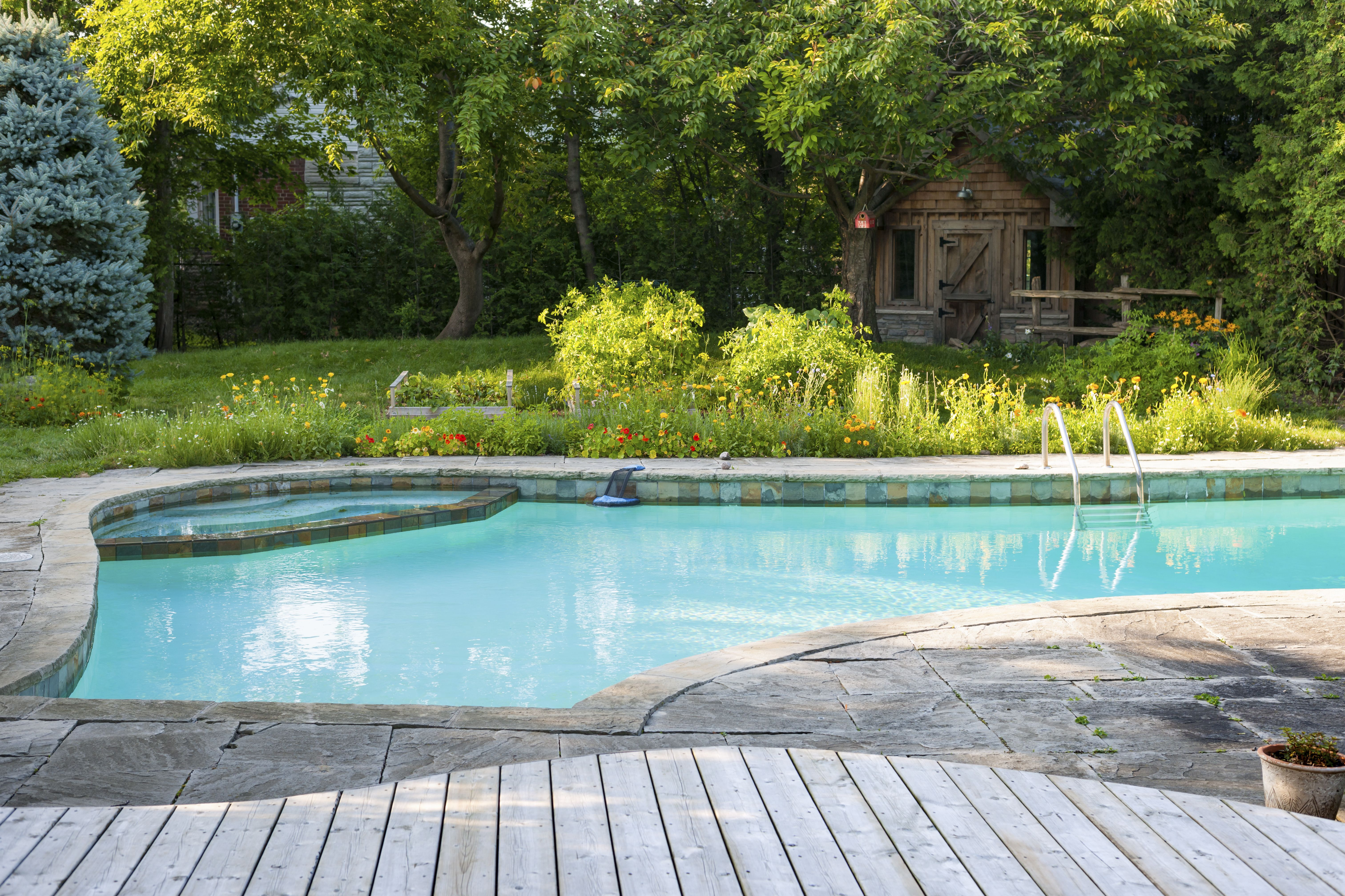 Servicios de mantenimiento de jardines y piscinas: Servicios de Airen Servicios Integrales