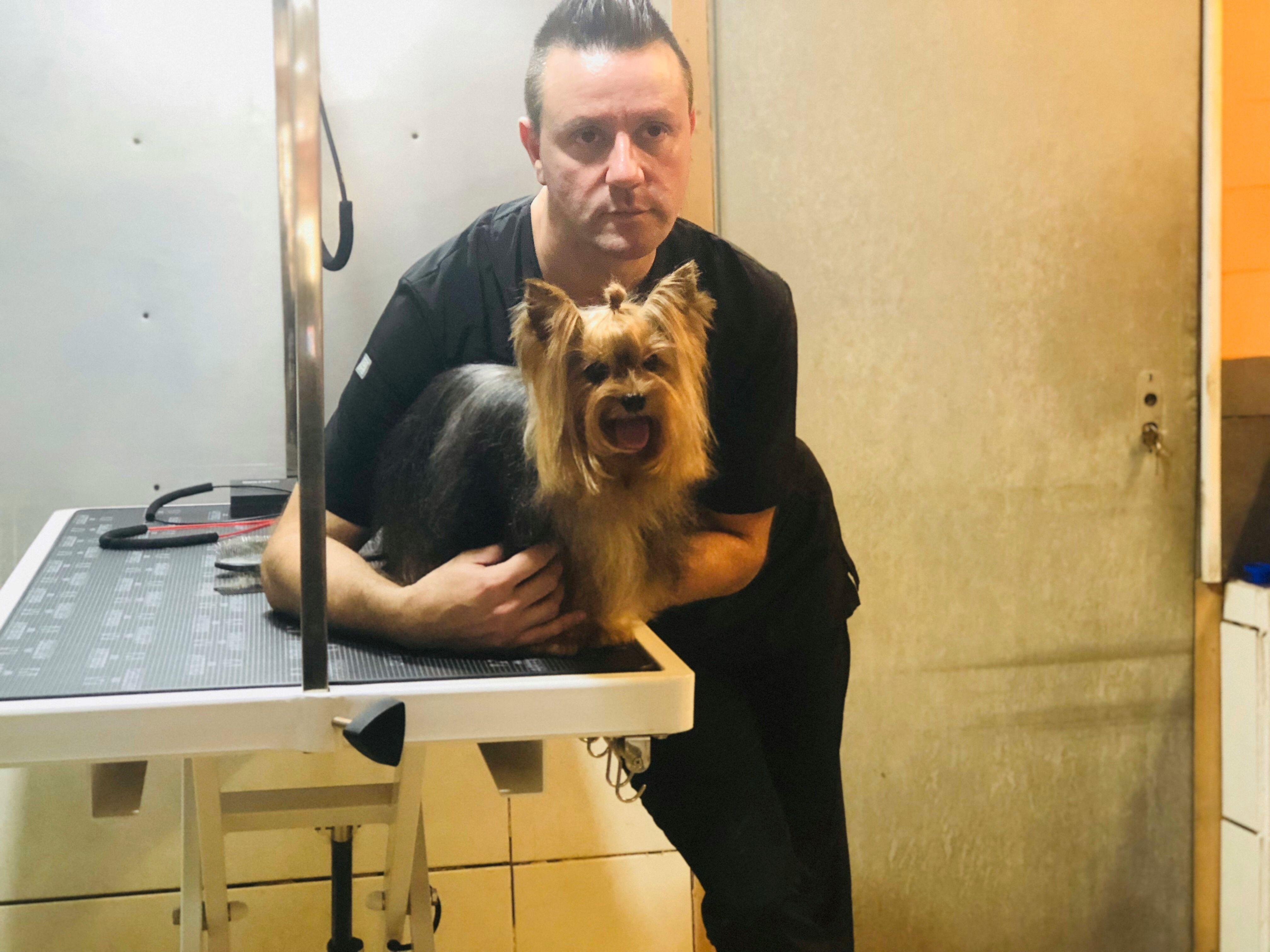 Complementos perros en Eixample Barcelona