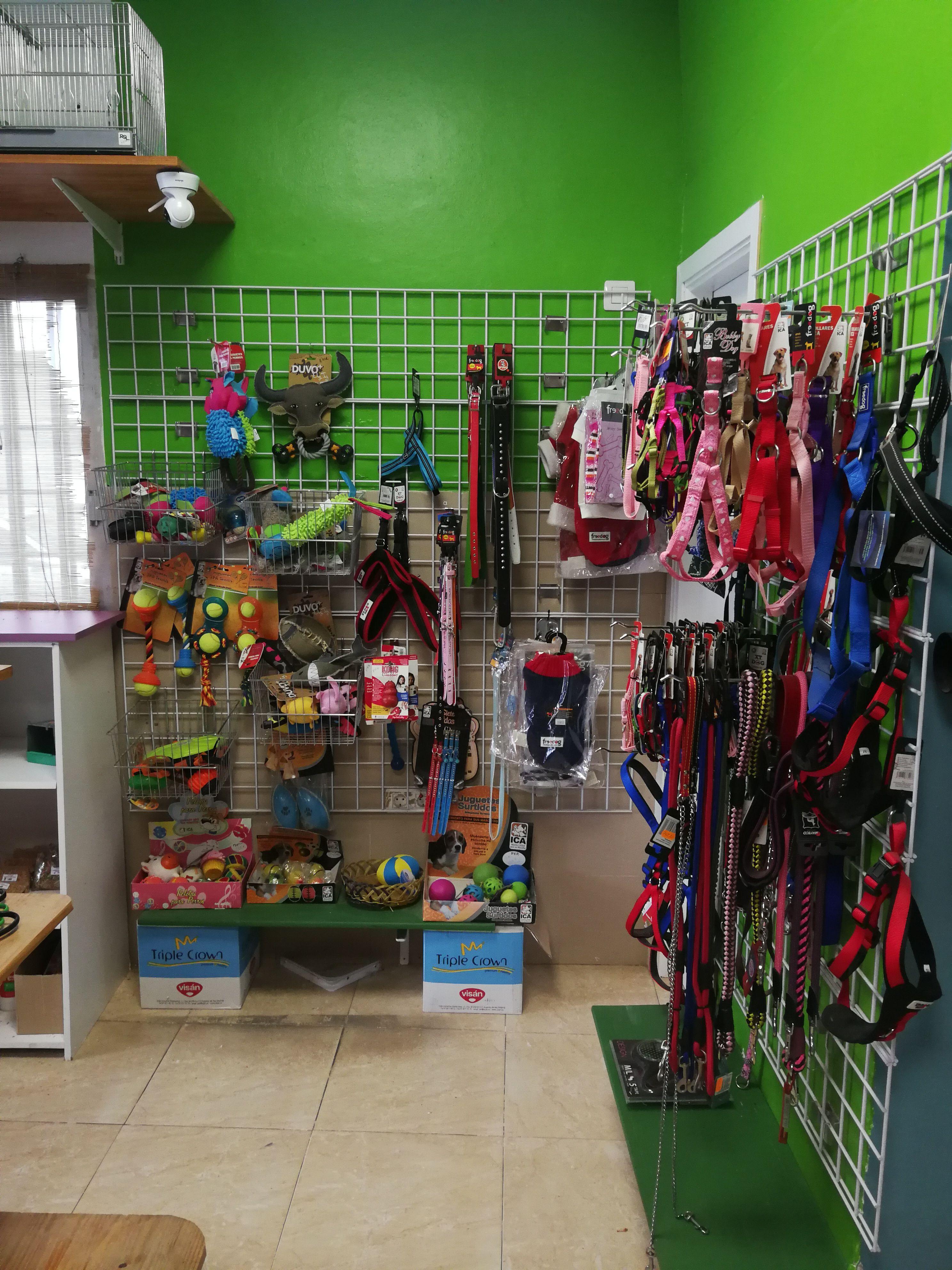 Accesorios para tu mascota en Granadilla de Abona