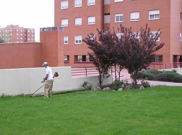 Foto 16 de Diseño y mantenimiento de jardines en  | Jardinería Naranjo