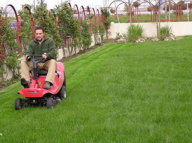Mantenimiento servicios de jardiner a naranjo - Servicios de jardineria ...