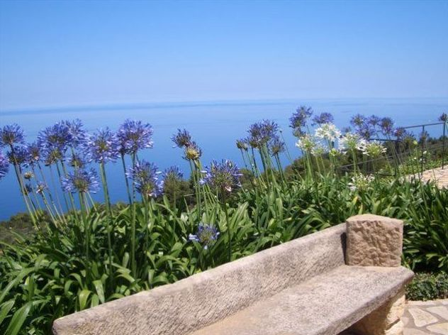 Diseño de jardines mediterráneos