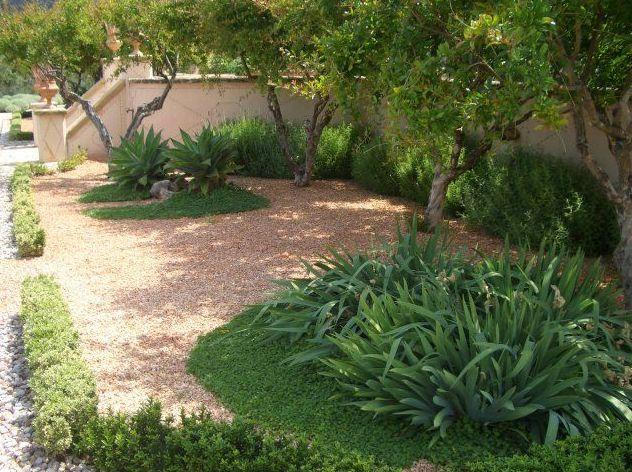 Jardines áridos