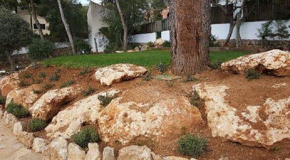 Pradera de césped, rocalla y vegetación
