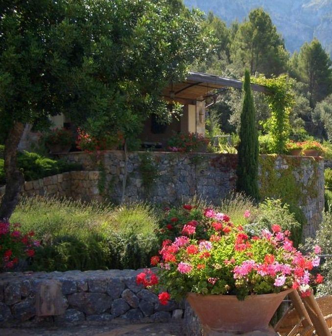 Trabajos de verano en el jardín