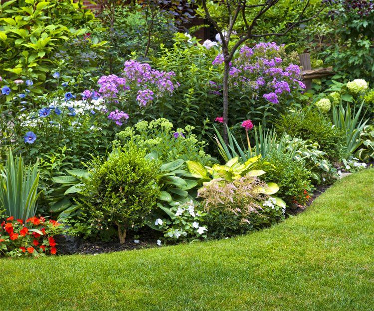 Plantas de jardin exterior stunning jardn vertical de Plantas jardineras exterior