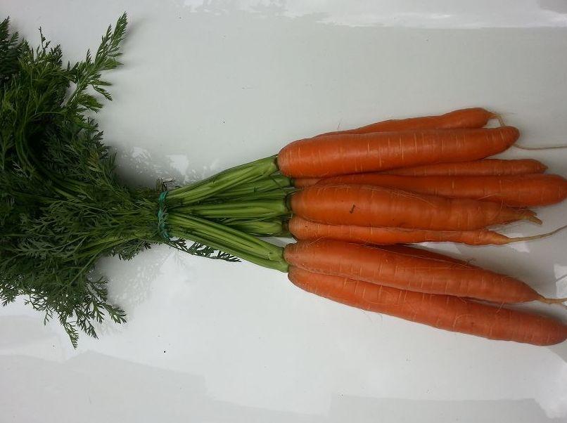 Caja Granel: Formato Venta de Zanahorias Medrano