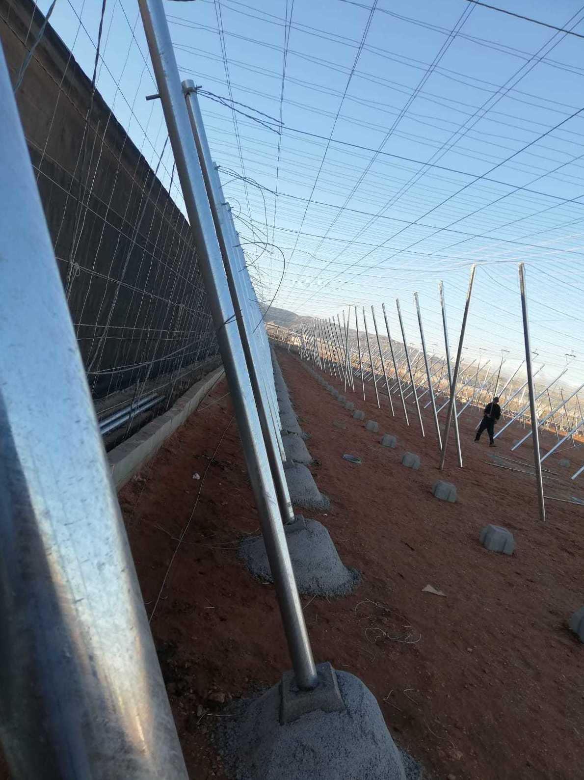 Foto 4 de Estructuras metálicas en  | Coinva Invernaderos