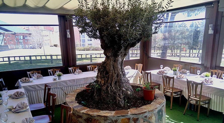Foto 5 de Restaurante en Alcobendas | Amarras