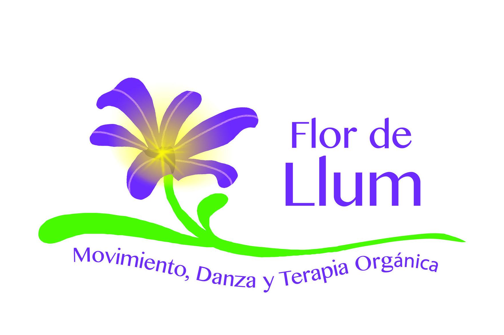 logo flor de llum
