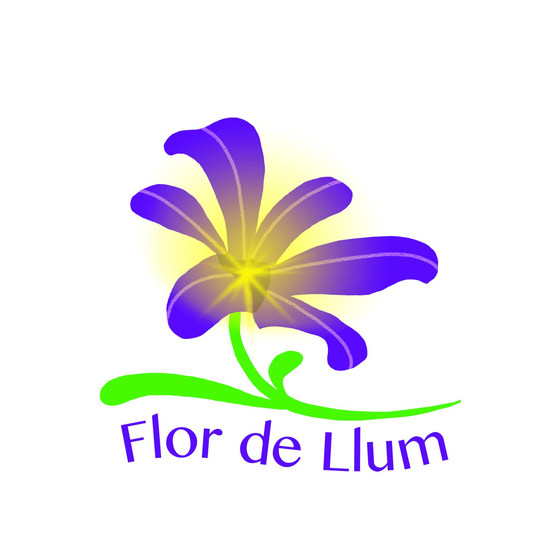 imatge flor de llum
