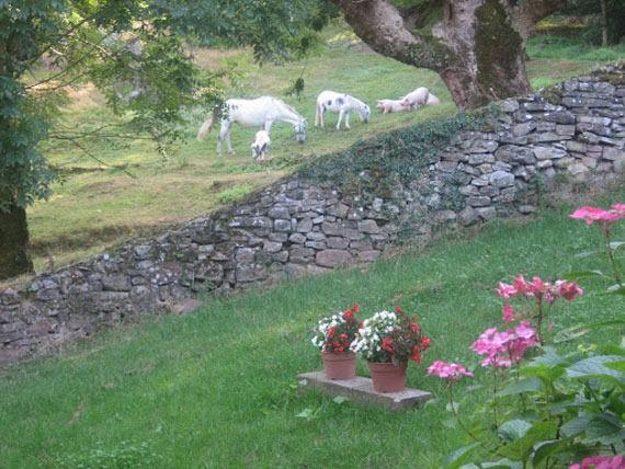 Foto 6 de Turismo rural en Baztan | Casa Rural Urruska