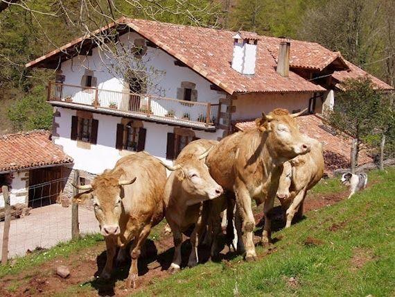 Foto 11 de Turismo rural en Baztan | Casa Rural Urruska