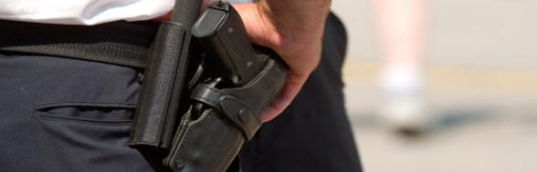 Vigilantes de seguridad: Catálogo de CERMA S.L.