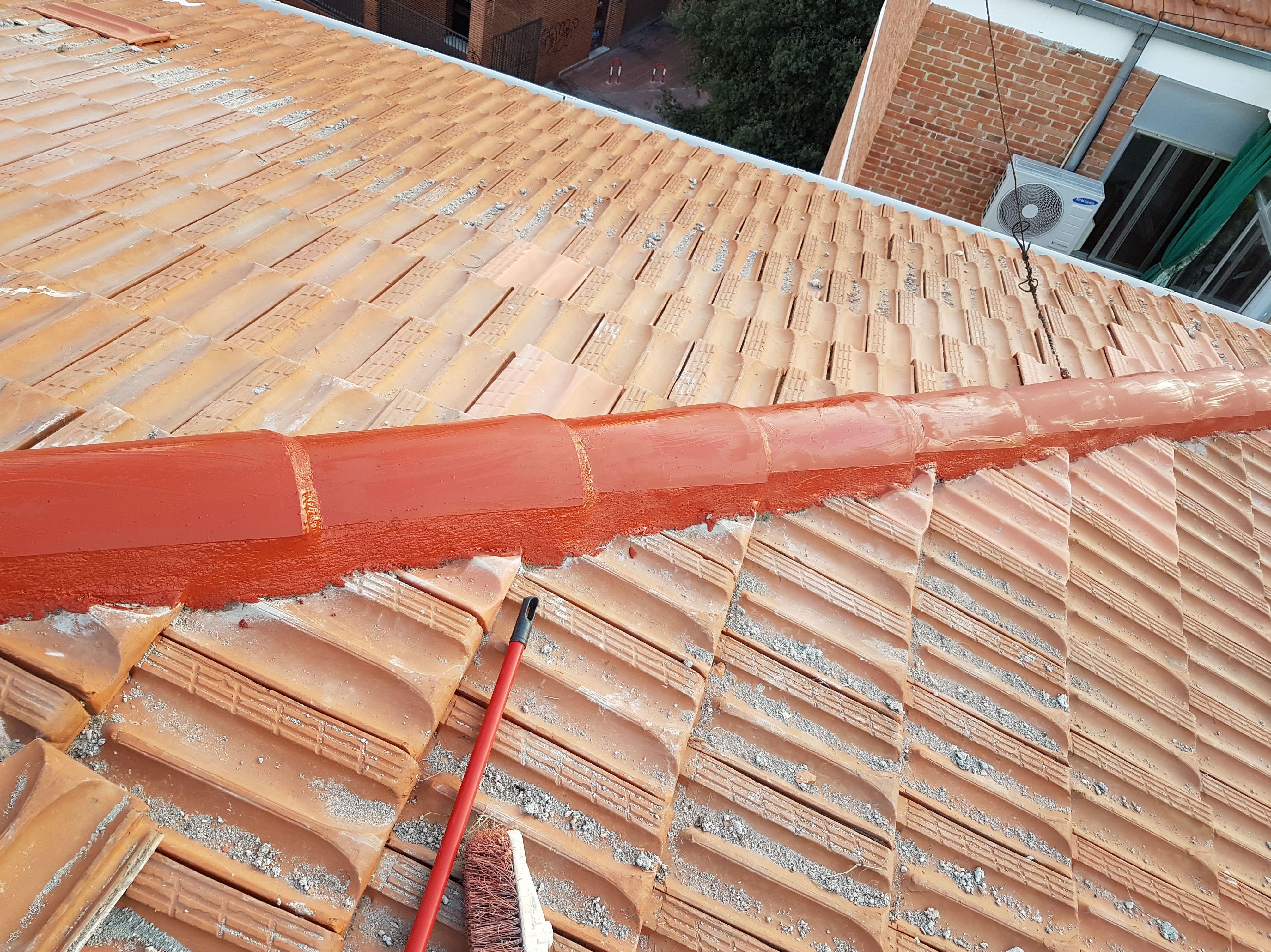 Repaso de tejado y caballetes  calle Valle de Oro Nº 5