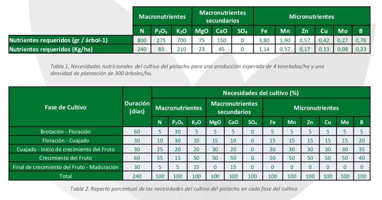 Informacion nutricional para el pistacho