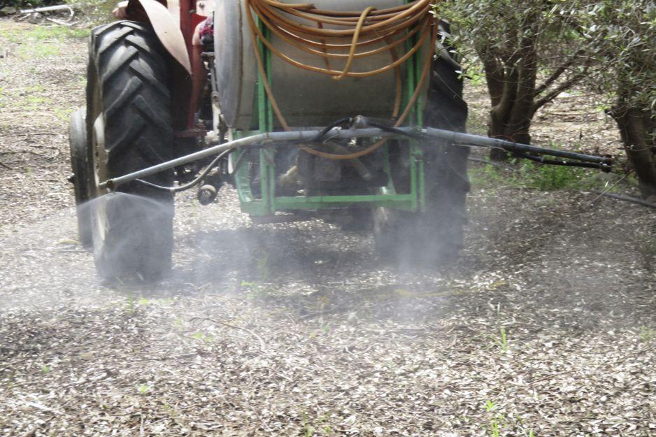 Tratamientos de plagas de cultivos en Málaga