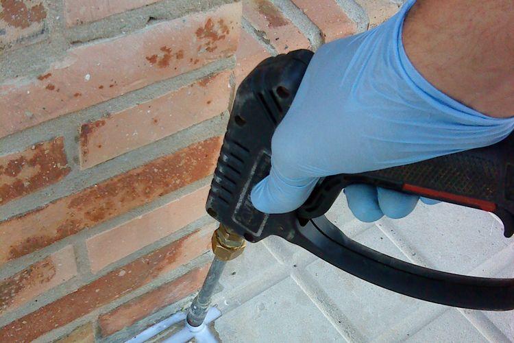 Los mejores tratamientos para el control de plagas en Sevilla