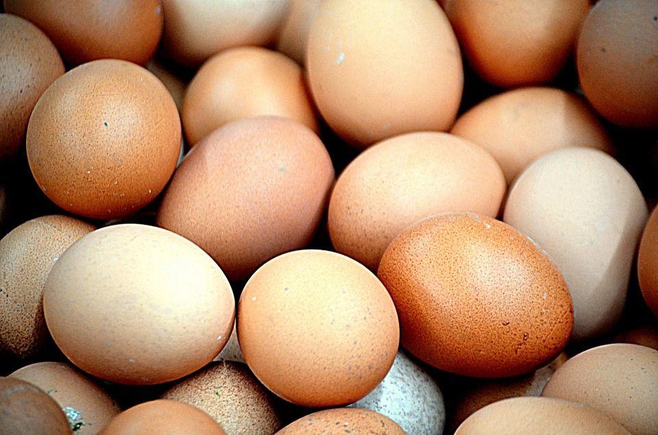 Oferta de huevos: Productos de Carnicería Halal Kouider