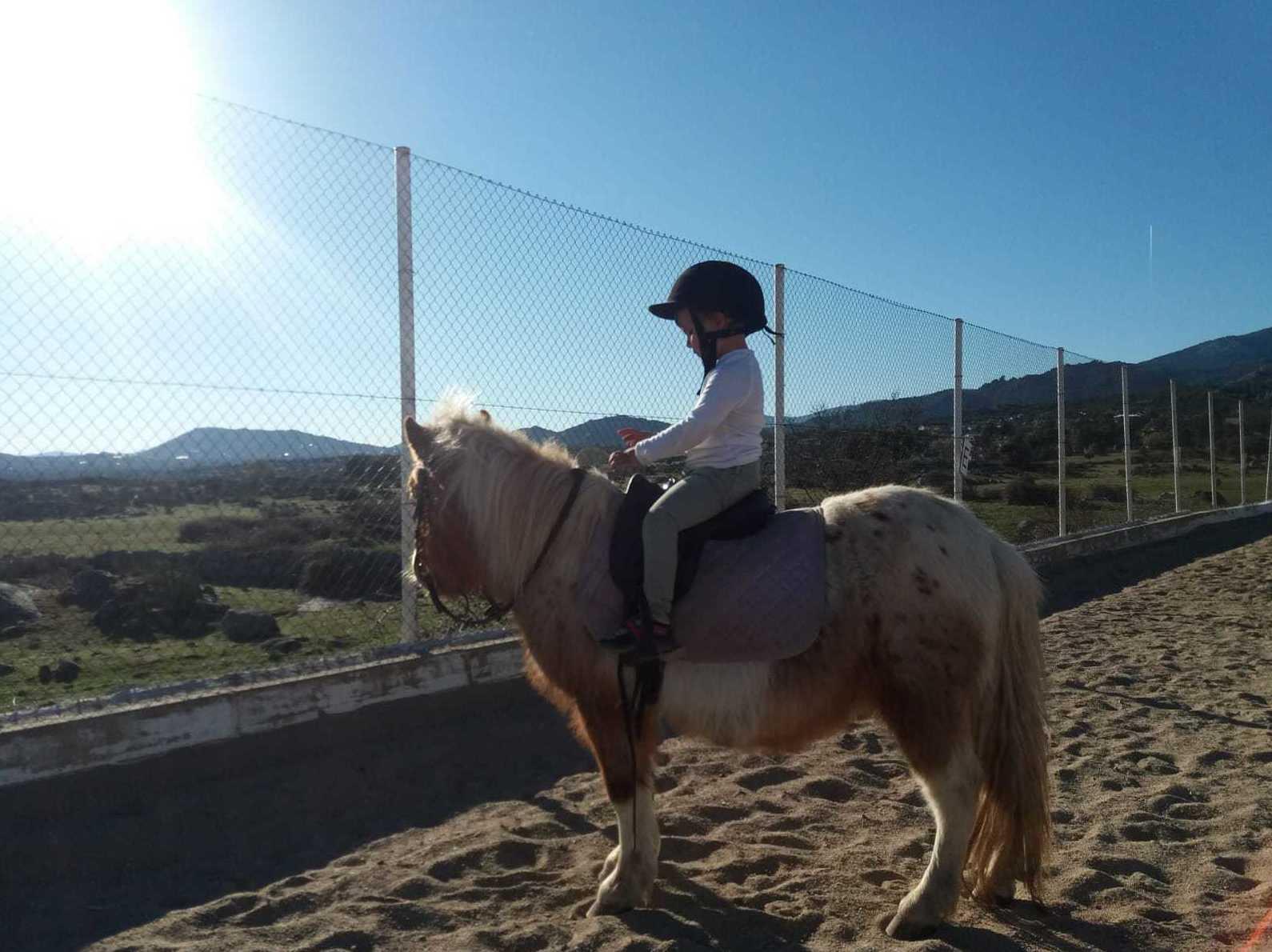 Paseos en poni: Actividades de Las Nieves Club Hípico