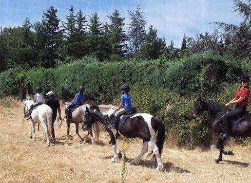 Rutas a caballo en Cerceda