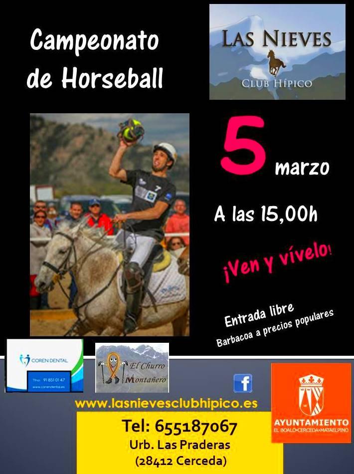 CAMPEONATO DE HORSEBALL