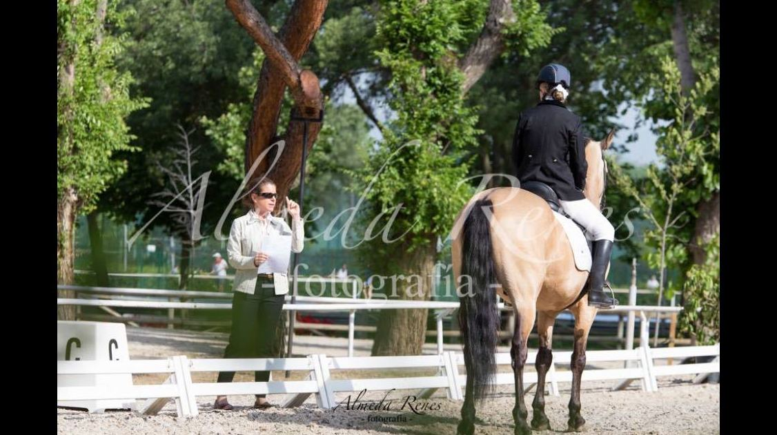 Foto 27 de Club hípico con servicio de pupilaje y veterinario en cerceda | Las Nieves Club Hípico