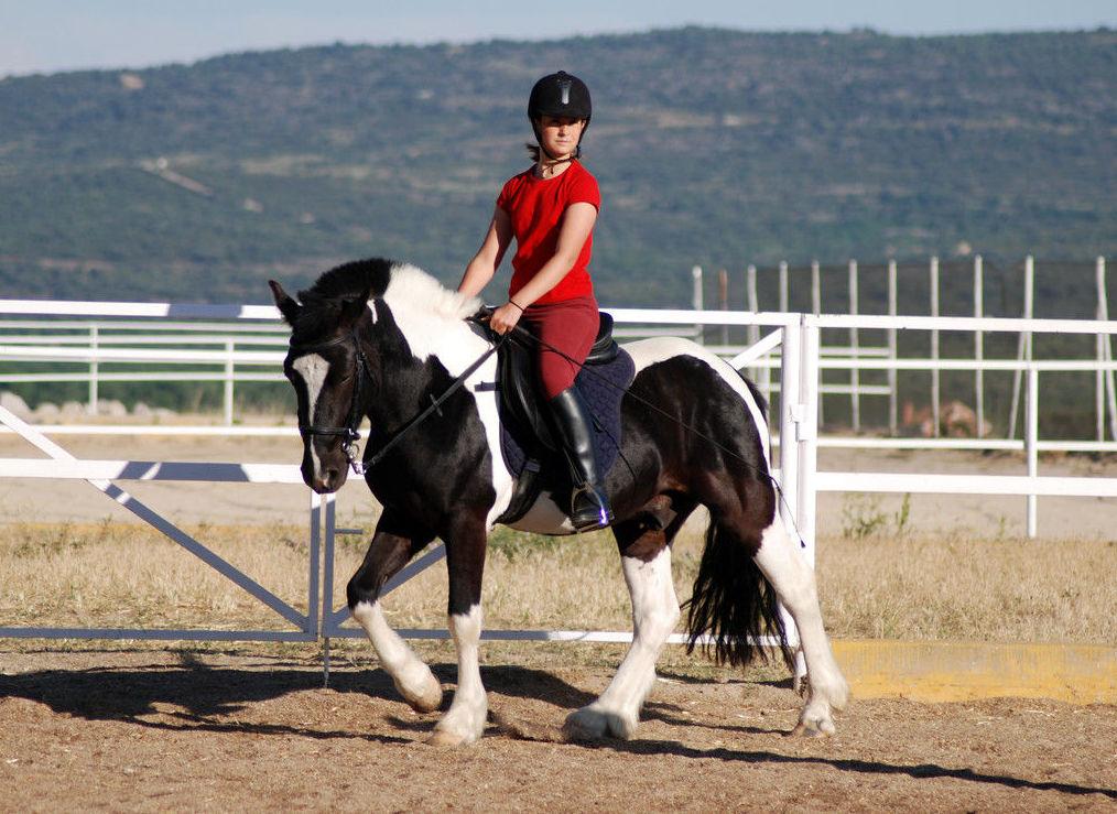 Clases de equitación en Cerceda