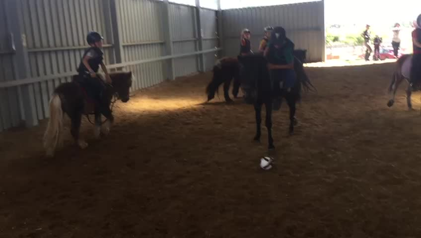 Horseball: Actividades de Las Nieves Club Hípico }}